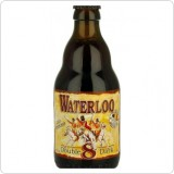 John Martin WATERLOO DOUBLE 8 DARK 0,33l (Abbey Dubbel)